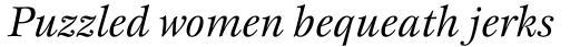 New Esprit Pro Italic sample