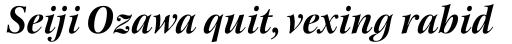 New Esprit Pro Display Bold Italic sample