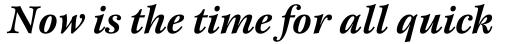 New Esprit Std Bold Italic sample