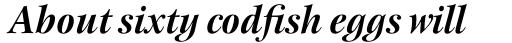 New Esprit Std Display Bold Italic sample
