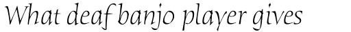 ITC Humana Serif Pro Light Italic sample