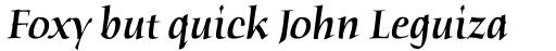 ITC Humana Serif Pro Medium Italic sample