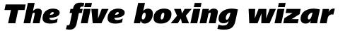 Frutiger Next Central European Black Italic sample