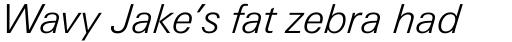 Linotype Univers 331 Basic Light Italic sample