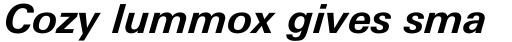 Linotype Univers 631 Basic Bold Italic sample