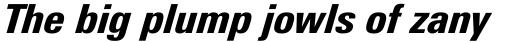 Linotype Univers 821 Condensed Black Italic sample