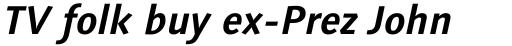 Linotype Syntax Bold Italic sample