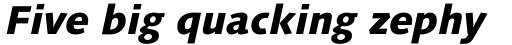 Linotype Syntax Heavy Italic sample