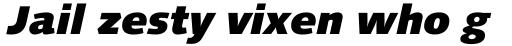 Linotype Syntax Black Italic sample