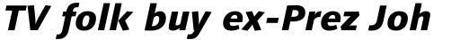Linotype Syntax Heavy Italic OsF sample