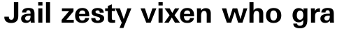 Linotype Univers Com 630 Basic Bold sample