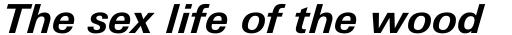 Linotype Univers Com 631 Basic Bold Italic sample
