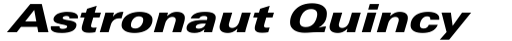 Linotype Univers Com 841 Extended Black Italic sample