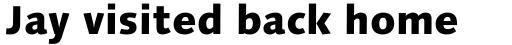 Linotype Syntax Com Heavy sample