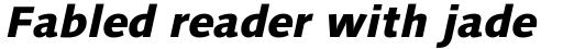 Linotype Syntax Com Heavy Italic sample