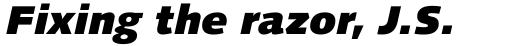 Linotype Syntax Com Black Italic sample