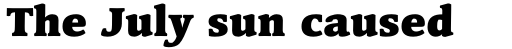 Linotype Syntax Serif Std Black sample
