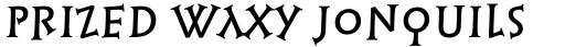 Linotype Syntax Lapidar Serif Display Pro Medium sample