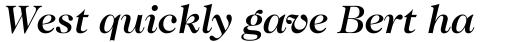 Caslon 224 Medium Italic sample