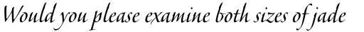 Veljovic Script Pro Cyrillic Regular sample