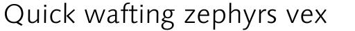 Linotype Syntax Com Light sample