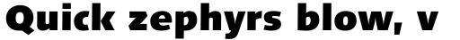 Linotype Syntax Com Black sample