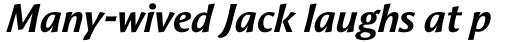 Aeris Pro B Bold Italic sample
