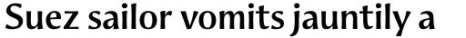 Aeris Pro Title A Bold sample