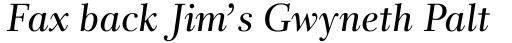 Rabenau Pro Book Italic sample