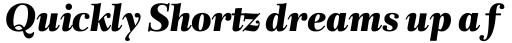 Rabenau Pro Poster Italic sample