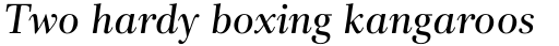 Rabenau Std Book Italic sample