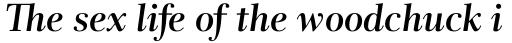Rabenau Std SemiBold Italic sample