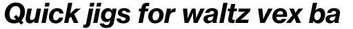 Neue Haas Grotesk Pro Text 76 Bold Italic sample
