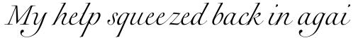 Rameau Pro Light Italic sample