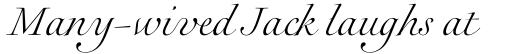 Rameau Std Light Italic sample