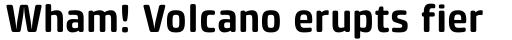 Klint Pro Rounded Bold sample