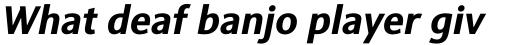 Sinova Std Bold Italic sample