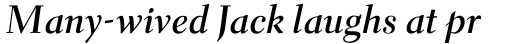 Parkinson Electra Pro Bold Italic sample