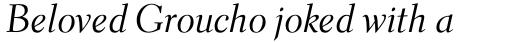 Parkinson Electra Std Italic sample