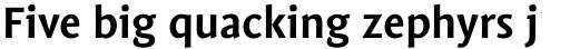 Mantika Sans Paneuropean W1G Bold sample