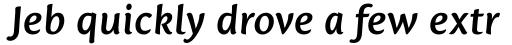 Mantika Sans Paneuropean W1G Bold Italic sample