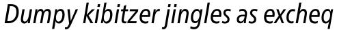 Neue Frutiger Paneuropean W1G Condensed Italic sample