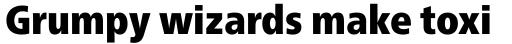 Neue Frutiger Paneuropean W1G Condensed ExtraBlack sample