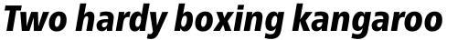 Neue Frutiger Pro Cyrillic Condensed Black Italic sample