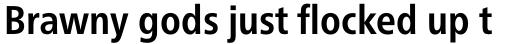Neue Frutiger Pro Cyrillic Condensed Bold sample