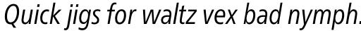 Neue Frutiger Pro Cyrillic Condensed Book Italic sample