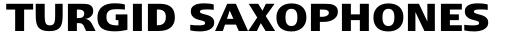 Linotype Ergo Hebrew Bold sample