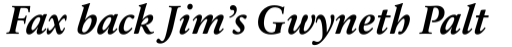 Sabon Next LT Bold Italic sample