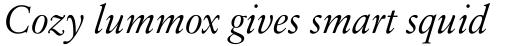 Sabon Next LT Display Italic sample