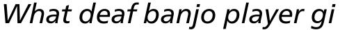 Neue Frutiger Paneuropean W1G Italic sample